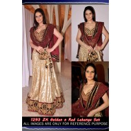 Zarine Khan Crepe Bollywood Replica Lehenga